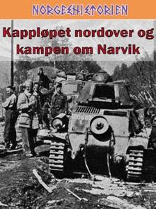 Kappløpet nordover og kampen om Narvik (ebok)