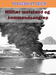 Militær motstand og kommandoangrep (ebok) av
