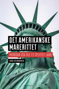Det amerikanske marerittet (ebok) av Thor Ste