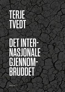 Det internasjonale gjennombruddet (ebok) av T