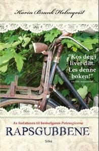 Rapsgubbene (ebok) av Karin Brunk Holmqvist