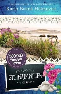 Steinhimmelen (ebok) av Karin Brunk Holmqvist