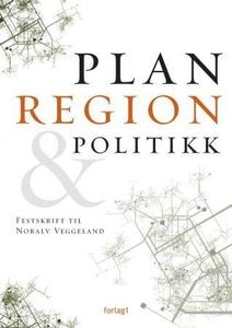 Plan, region & politikk (ebok) av