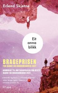 Eit anna blikk (ebok) av Erlend Skjetne