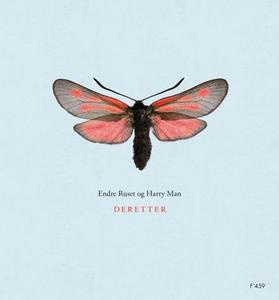 Deretter (ebok) av Harry Man, Endre Ruset