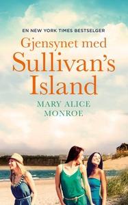 Gjensynet med Sullivan's Island (ebok) av Mar