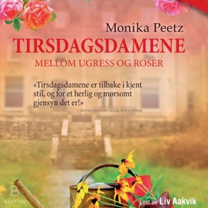 Tirsdagsdamene (lydbok) av Monika Peetz