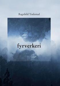 Fyrverkeri (ebok) av Ragnhild Yndestad