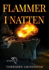 Flammer i natten (ebok) av Torbjørn Grindheim