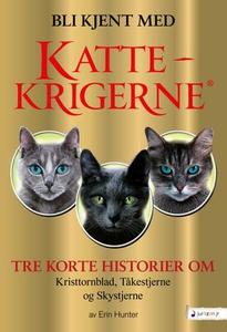 Bli kjent med Kattekrigerne (ebok) av Erin Hu