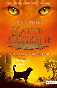 Flatfjes sin hemmelighet (ebok) av Erin Hunte