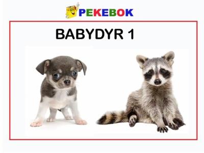 Babydyr 1 (ebok) av Ukjent