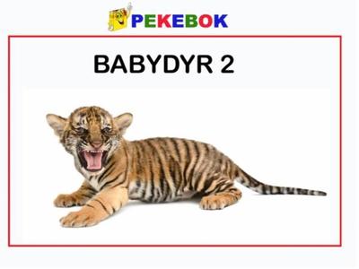 Babydyr 2 (ebok) av Ukjent