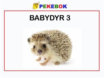 Babydyr 3 (ebok) av Ukjent