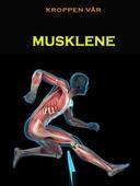 Musklene