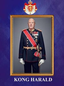Kong Harald (ebok) av Anniken Schiøll