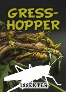 Gresshopper (ebok) av Lindsey Wilson