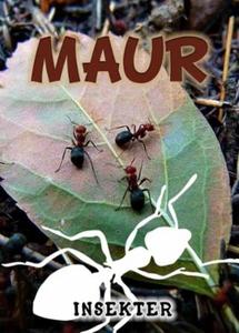 Maur (ebok) av Lindsey Wilson
