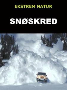 Snøskred (ebok) av Edward Alan Kurtz