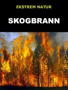 Skogbrann (ebok) av Edward Alan Kurtz