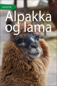 Alpakka og lama (ebok) av Susan Jones