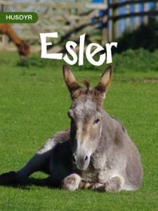 Esler (ebok) av Bjørn Ruud, Ruud Bjørn