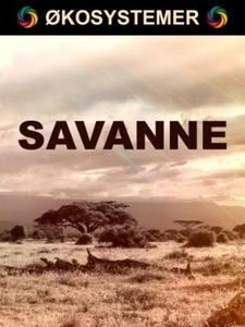Savanne (ebok) av Edward Alan Kurtz