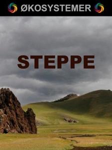 Steppe (ebok) av Edward Alan Kurtz