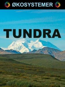 Tundra (ebok) av Edward Alan Kurtz