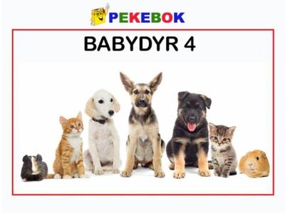 Babydyr 4 (ebok) av Ukjent