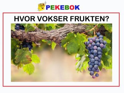 Hvor vokser frukten (ebok) av Ukjent