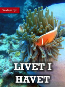Livet i havet (ebok) av Lindsey Wilson
