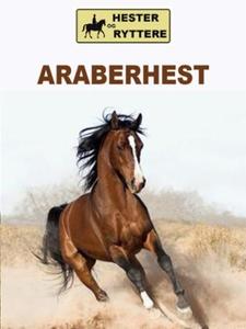 Araberhest (ebok) av Susan Morris