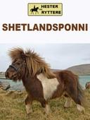 Shetlandsponnien