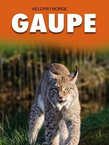 Gaupe (ebok) av Marte Østmoe