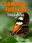 Sommerfuglens livssyklus