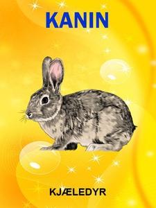 Kaniner og harer (ebok) av Tania Cheslaw