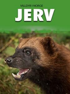 Jerv (ebok) av Jan Ruud, Camilla Jonsson