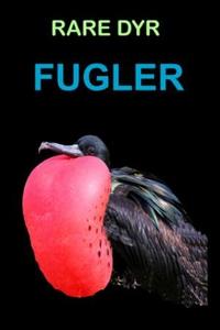 Fugler (ebok) av Edward Alan Kurtz