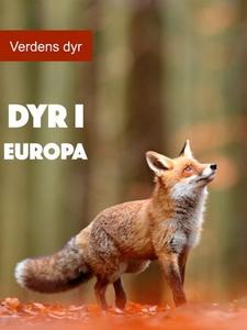 Dyr i Europa (ebok) av Diana Morrison