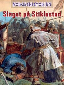 Slaget på Stiklestad (ebok) av Kim Hjardar