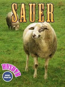 Sauer (ebok) av Eva Jensen