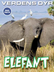 Elefant (ebok) av Ukjent