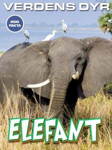 Elefant (ebok) av