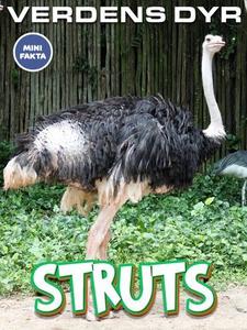 Struts (ebok) av Maria Ling