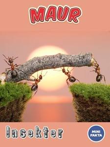 Maur (ebok) av Ukjent