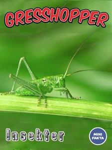 Gresshopper (ebok) av Ukjent