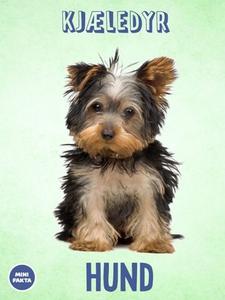 Hund (ebok) av Tania Cheslaw