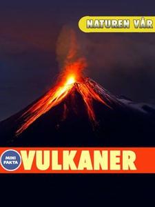 Vulkaner (ebok) av Benny Bergman