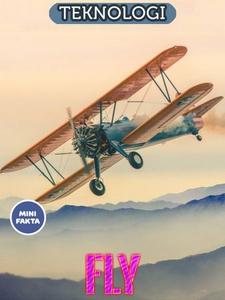 Fly Minifakta (ebok) av